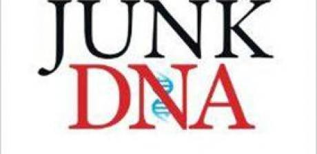Junk DNA by Joseph R Scogna and Kathy Scogna